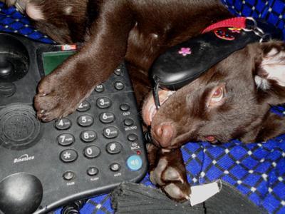 Calling his GF