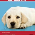 Labrador-Retrievers-Barrons-Dog-Breeds-Bibles-0