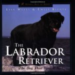 The-Labrador-Retriever-The-Dog-That-Does-It-All-Howells-Best-of-Breed-Library-0
